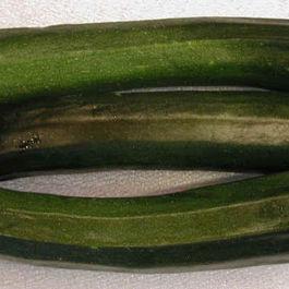 I-squash-zucchini