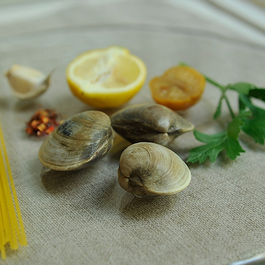 Spaghetti with Clams, Parsley, Garlic, and Lemon (x2)