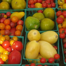 0322_examiner_tomatoes_small_pic
