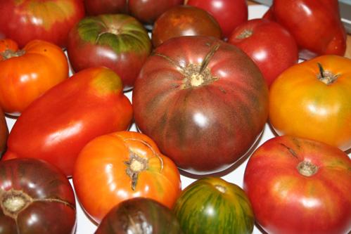 Heirloom Tomato Ceviche