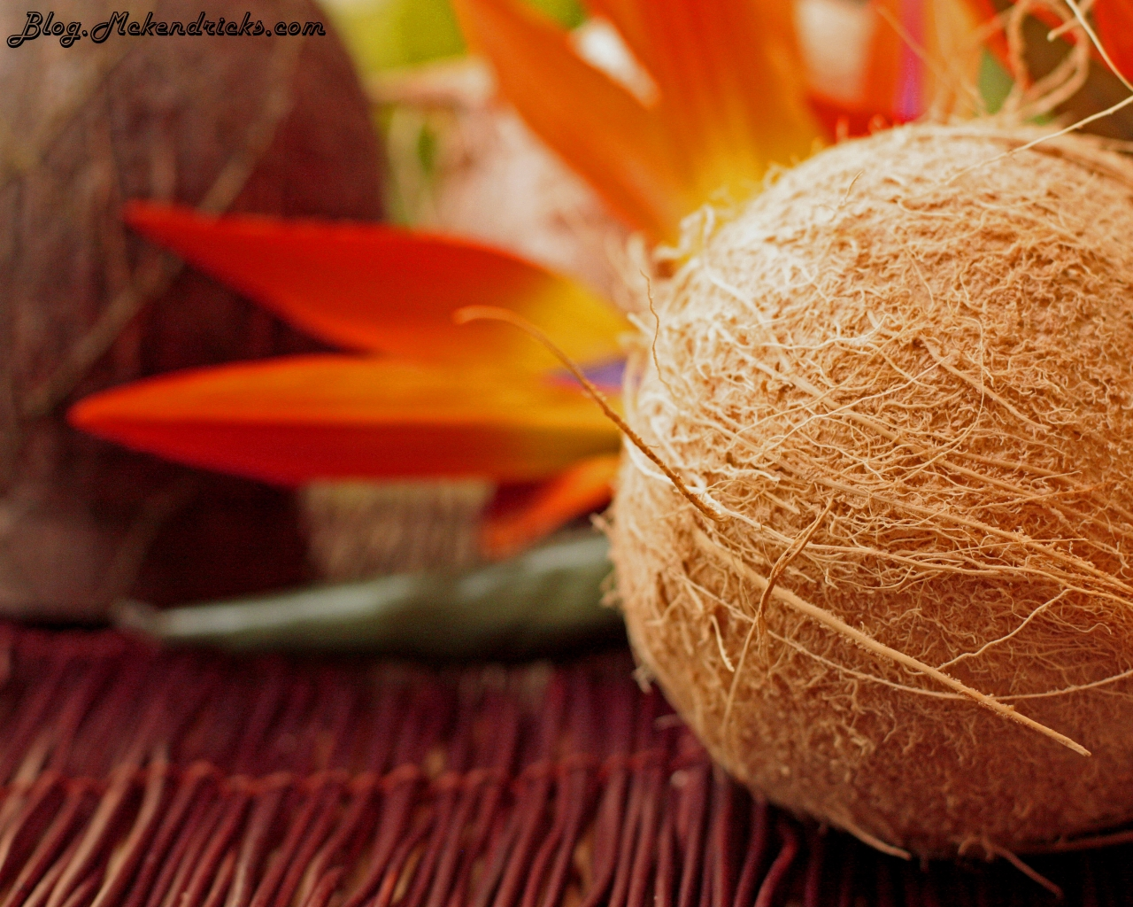 "Fresh Coconut and Panko Crusted ""Onaga"" Papaya Salsa Tempura Fried Shrimp"