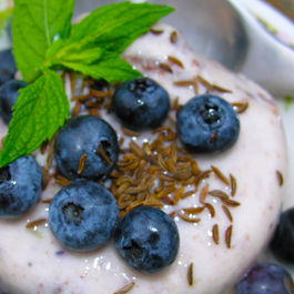 Key lime frozen yogurt with wild Maine blueberries and toasted caraway