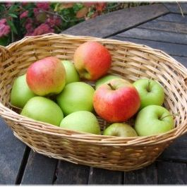 Basket_apples