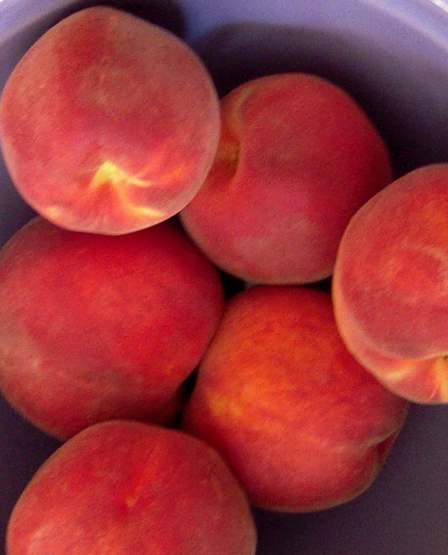 Peachy sweet wings