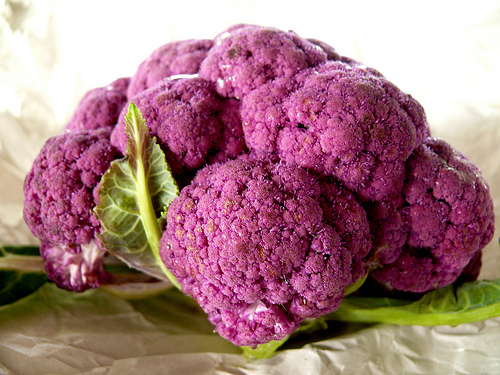 Purple Mac & Cheese Deception