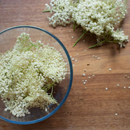 Elderflowerc-3
