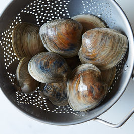 All-about-clams_food52_mark_weinberg_14-07-01_0427
