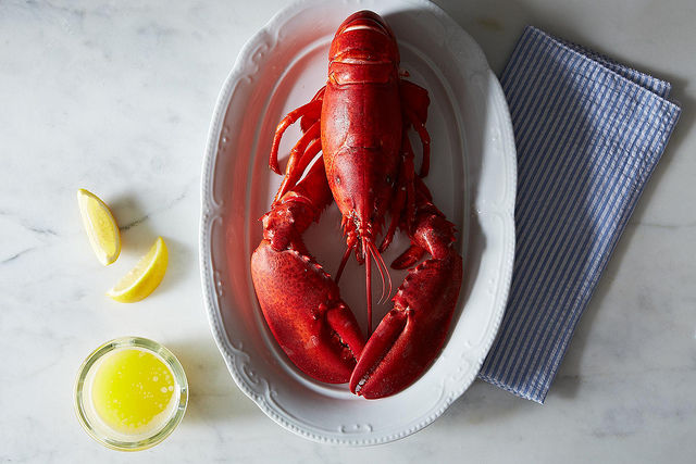 5 Links to Read Before Cooking Lobster