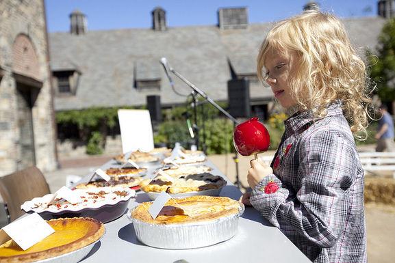 Stone Barns Harvest Fest Recap