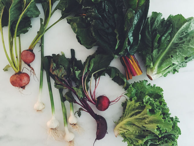 Tell Us What to Cook from Our First CSA Share!