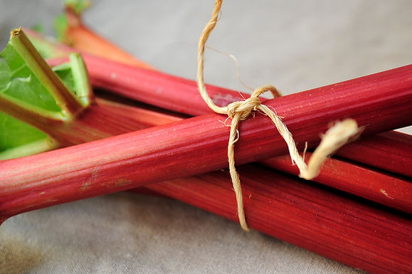 DIY Group Project: Rhubarb Preserves