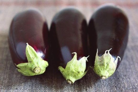 Perry-eggplant2