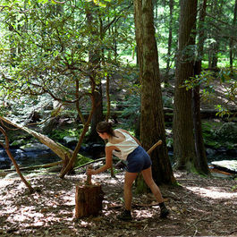 Beaver Brook's Big Feast: A Weekend in the Woods