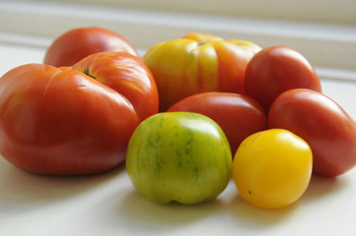 Too Many Cooks: What's Your Favorite Summer Vegetable?