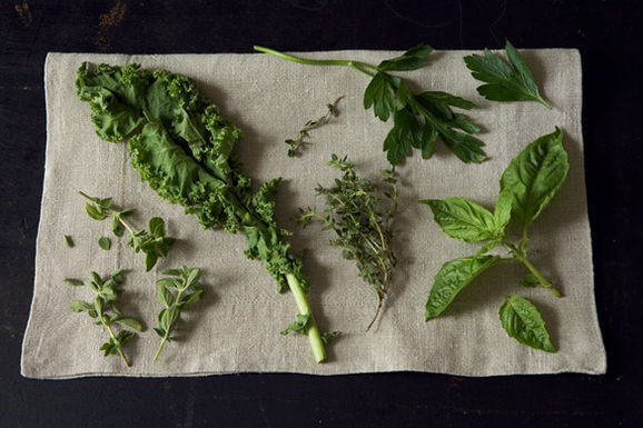 Too Many Cooks: What's Your Favorite Herb?