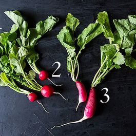Down & Dirty: Radishes