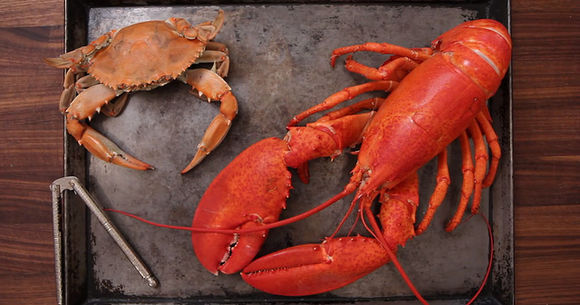 How to Crack Crabs and Lobsters