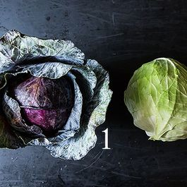 Cabbage_1