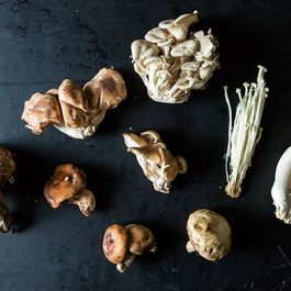 Down & Dirty: Mushrooms