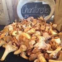 Chanterelle-mushrooms-la-funghi-001