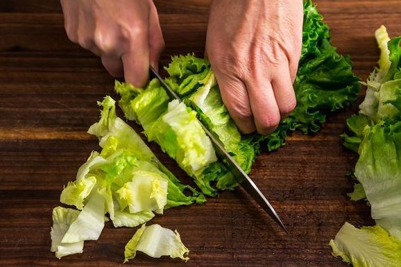 Tips for Handling an Overload of Lettuce