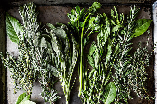 Community Picks Recipe Testing -- Fresh Herbs