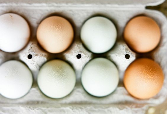 Ahp_kinfolk-eggs_ingredients_17380001-733x500