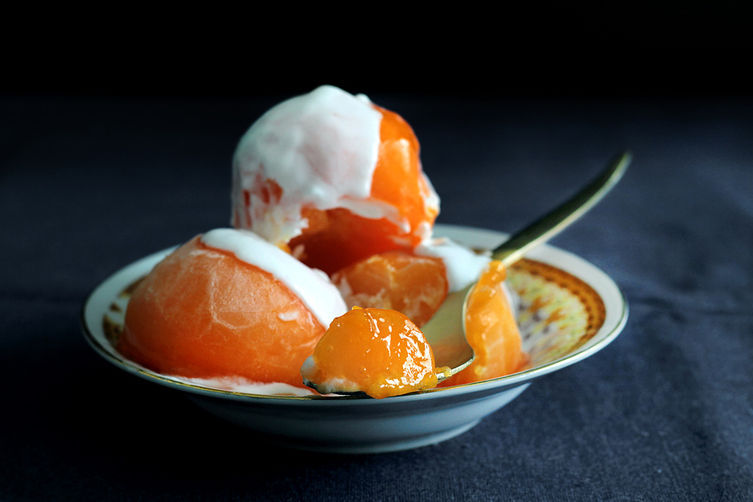 Homemade Persimmon Sorbet