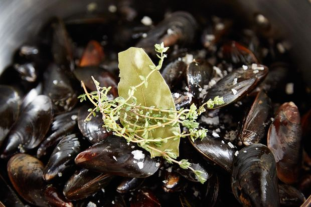 2014-0325_finalist_mussels-dijonnaise-201