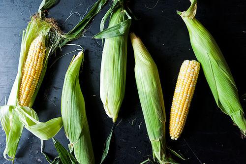 ... corn polenta yotam ottolenghi s sweet corn polenta with eggplant sauce