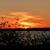 Sunsetonprovidencebaynite2