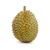 Jvi_0007s_0000_durian