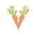 New_carrot_v