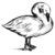 Swan_(1)