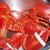 Lobster_001
