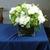 Clooneyflowers
