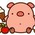 Twitter_pig