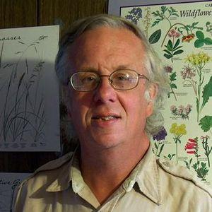 Mark Campidonica
